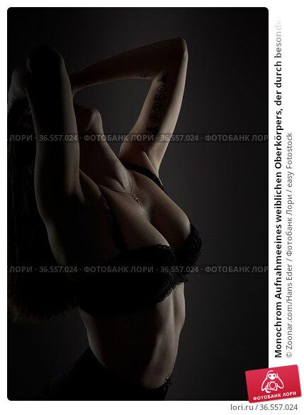 Monochrom Aufnahmeeines weiblichen Oberkörpers, der durch besondere... Стоковое фото, фотограф Zoonar.com/Hans Eder / easy Fotostock / Фотобанк Лори