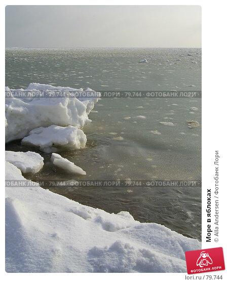 Купить «Море в яблоках», фото № 79744, снято 11 февраля 2006 г. (c) Alla Andersen / Фотобанк Лори