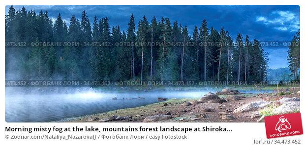 Morning misty fog at the lake, mountains forest landscape at Shiroka... Стоковое фото, фотограф Zoonar.com/Nataliya_Nazarova{} / easy Fotostock / Фотобанк Лори