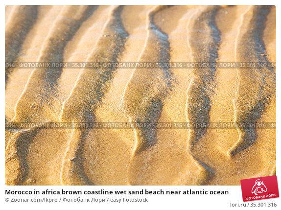 Morocco in africa brown coastline wet sand beach near atlantic ocean. Стоковое фото, фотограф Zoonar.com/lkpro / easy Fotostock / Фотобанк Лори
