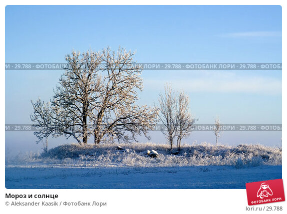 Мороз и солнце, фото № 29788, снято 4 декабря 2016 г. (c) Aleksander Kaasik / Фотобанк Лори
