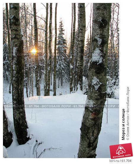 Мороз и солнце, фото № 61704, снято 8 февраля 2007 г. (c) Осиев Антон / Фотобанк Лори