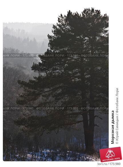 Морозная дымка, фото № 173980, снято 8 января 2008 г. (c) Юрий Синицын / Фотобанк Лори