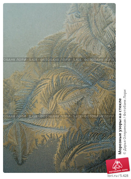 Купить «Морозные узоры на стекле», фото № 5428, снято 3 февраля 2006 г. (c) Дарья Олеринская / Фотобанк Лори