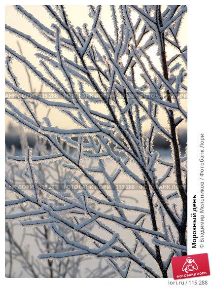 Морозный день, фото № 115288, снято 1 декабря 2004 г. (c) Владимир Мельников / Фотобанк Лори