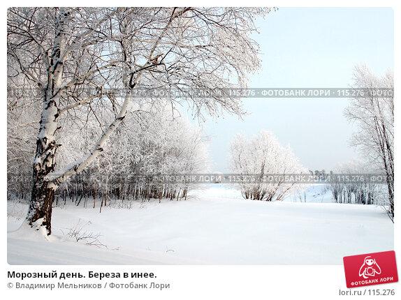 Морозный день. Береза в инее., фото № 115276, снято 1 декабря 2004 г. (c) Владимир Мельников / Фотобанк Лори