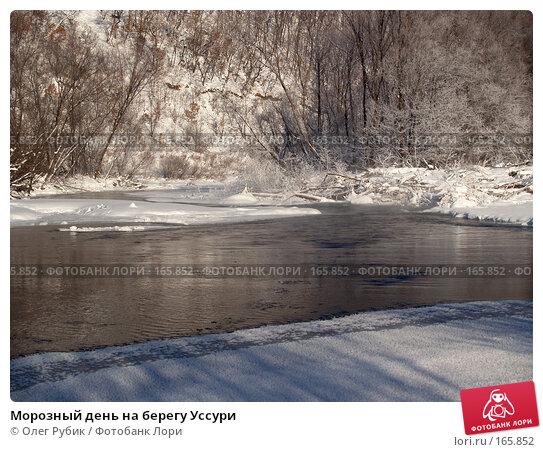Морозный день на берегу Уссури, фото № 165852, снято 4 января 2008 г. (c) Олег Рубик / Фотобанк Лори