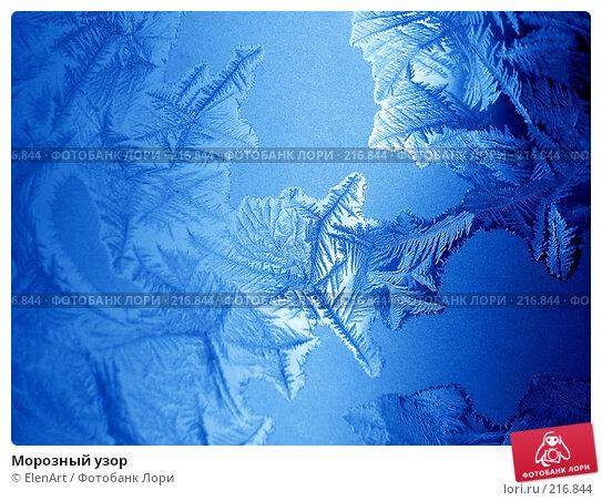 Морозный узор, фото № 216844, снято 20 сентября 2017 г. (c) ElenArt / Фотобанк Лори