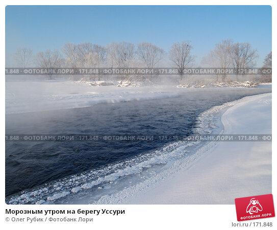 Морозным утром на берегу Уссури, фото № 171848, снято 8 января 2008 г. (c) Олег Рубик / Фотобанк Лори