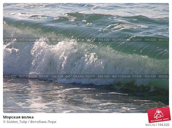 Морская волна, фото № 194020, снято 19 января 2008 г. (c) Golden_Tulip / Фотобанк Лори
