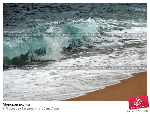 Купить «Морская волна», фото № 275000, снято 17 апреля 2008 г. (c) Морозова Татьяна / Фотобанк Лори