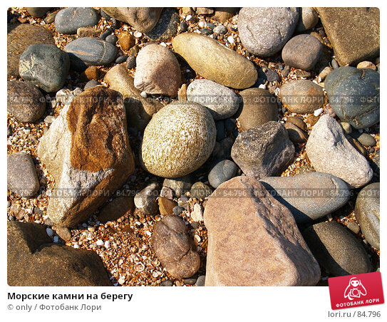 Морские камни на берегу, фото № 84796, снято 5 августа 2007 г. (c) only / Фотобанк Лори