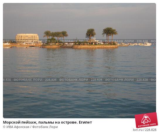 Морской пейзаж, пальмы на острове. Египет, фото № 228828, снято 2 января 2008 г. (c) ИВА Афонская / Фотобанк Лори