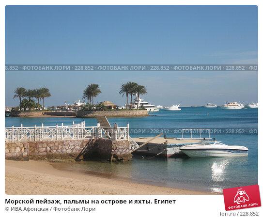 Морской пейзаж, пальмы на острове и яхты. Египет, фото № 228852, снято 8 января 2008 г. (c) ИВА Афонская / Фотобанк Лори