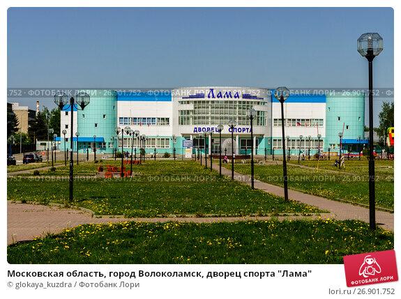 дворец спорта лама волоколамск открытие фото для