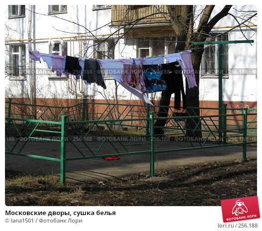 Московские дворы, сушка белья, эксклюзивное фото № 256188, снято 28 марта 2008 г. (c) lana1501 / Фотобанк Лори