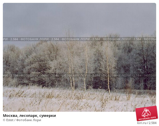 Москва, лесопарк, сумерки, фото № 2584, снято 21 сентября 2017 г. (c) Estet / Фотобанк Лори