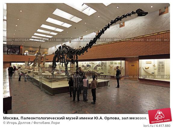Мо�ква Палеон�ологи�е�кий м�зей имени ЮА О�лова зал