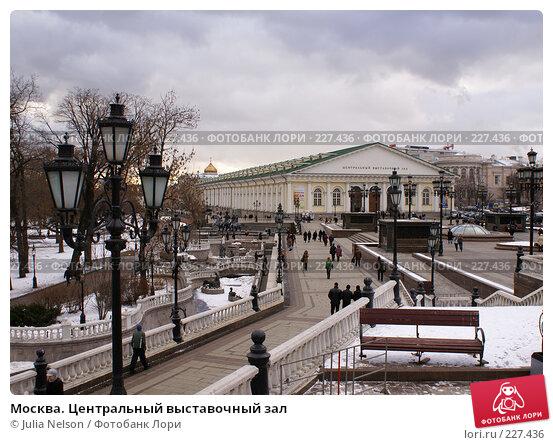Купить «Москва. Центральный выставочный зал», фото № 227436, снято 14 февраля 2008 г. (c) Julia Nelson / Фотобанк Лори