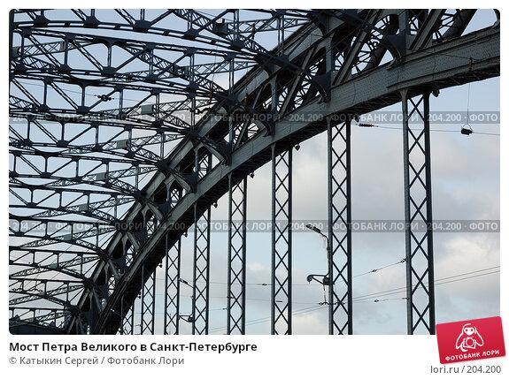 Мост Петра Великого в Санкт-Петербурге, фото № 204200, снято 16 февраля 2008 г. (c) Катыкин Сергей / Фотобанк Лори