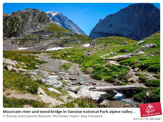 Mountain river and wood bridge in Vanoise national Park alpine valley... Стоковое фото, фотограф Zoonar.com/Laurent Davoust / easy Fotostock / Фотобанк Лори