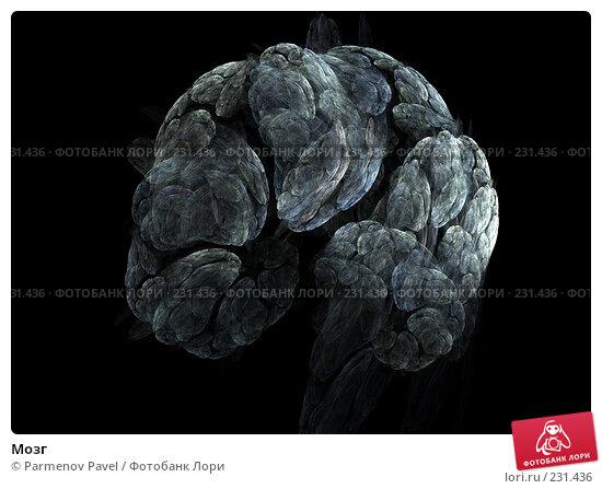 Мозг, иллюстрация № 231436 (c) Parmenov Pavel / Фотобанк Лори