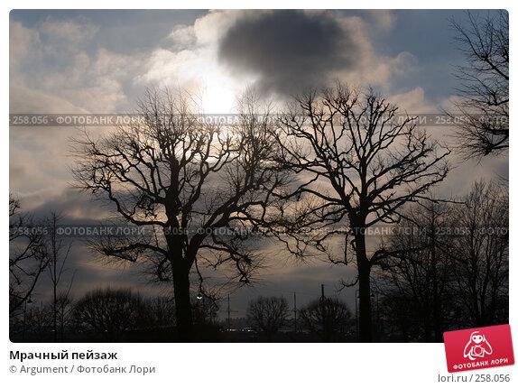 Мрачный пейзаж, фото № 258056, снято 13 ноября 2007 г. (c) Argument / Фотобанк Лори