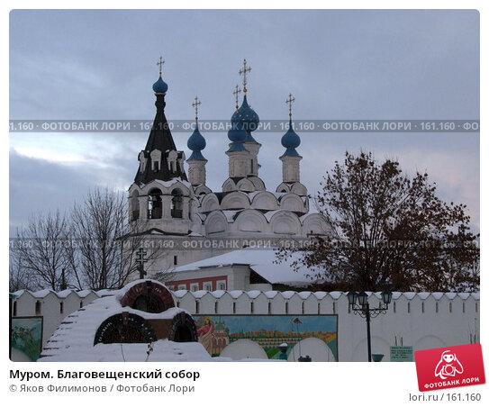 Муром. Благовещенский собор, фото № 161160, снято 22 декабря 2007 г. (c) Яков Филимонов / Фотобанк Лори