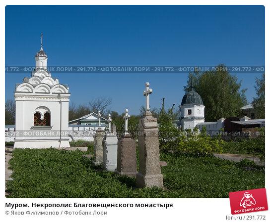Муром. Некрополис Благовещенского монастыря, фото № 291772, снято 2 мая 2008 г. (c) Яков Филимонов / Фотобанк Лори