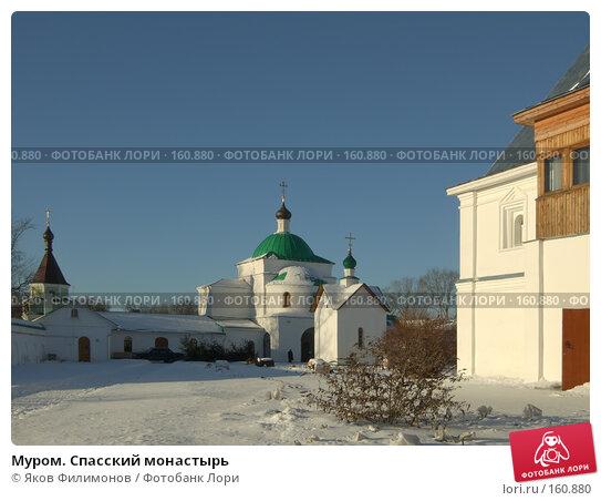 Купить «Муром. Спасский монастырь», фото № 160880, снято 23 декабря 2007 г. (c) Яков Филимонов / Фотобанк Лори
