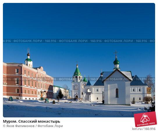 Муром. Спасский монастырь, фото № 160916, снято 23 декабря 2007 г. (c) Яков Филимонов / Фотобанк Лори
