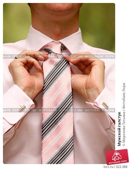 Мужской галстук, фото № 323388, снято 6 июня 2008 г. (c) Морозова Татьяна / Фотобанк Лори