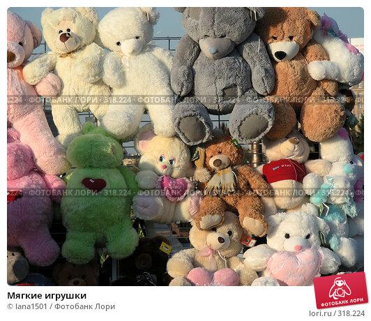 Купить «Мягкие игрушки», эксклюзивное фото № 318224, снято 27 апреля 2008 г. (c) lana1501 / Фотобанк Лори