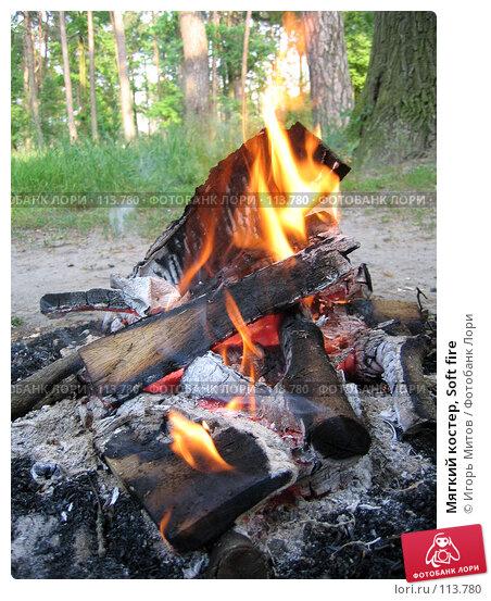 Мягкий костер, Soft fire, фото № 113780, снято 6 июня 2004 г. (c) Игорь Митов / Фотобанк Лори