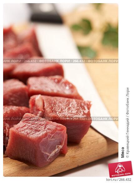Мясо, фото № 266432, снято 25 сентября 2005 г. (c) Кравецкий Геннадий / Фотобанк Лори