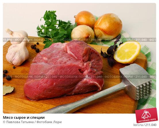 Купить «Мясо сырое и специи», фото № 211040, снято 25 февраля 2008 г. (c) Павлова Татьяна / Фотобанк Лори