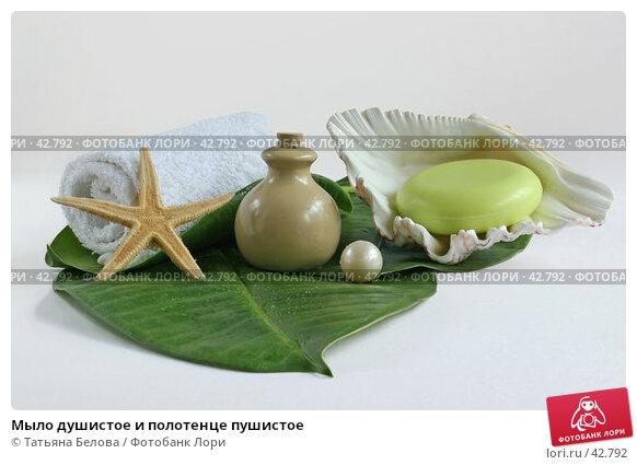 Мыло душистое и полотенце пушистое, фото № 42792, снято 10 мая 2007 г. (c) Татьяна Белова / Фотобанк Лори