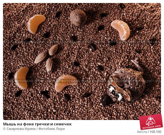 Мышь на фоне гречки и семечек, фото № 168100, снято 7 января 2008 г. (c) Смирнова Ирина / Фотобанк Лори