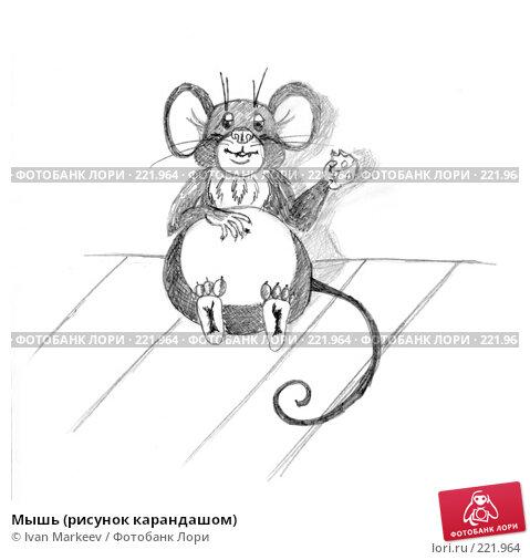 Мышь (рисунок карандашом), иллюстрация № 221964 (c) Василий Каргандюм / Фотобанк Лори