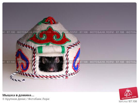 Мышка в домике..., фото № 87108, снято 23 августа 2007 г. (c) Крупнов Денис / Фотобанк Лори