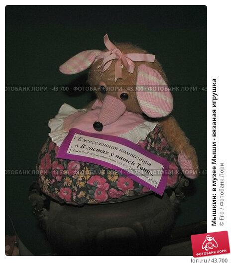 Купить «Мышкин: в музее Мыши - вязаная игрушка», фото № 43700, снято 29 апреля 2006 г. (c) Fro / Фотобанк Лори