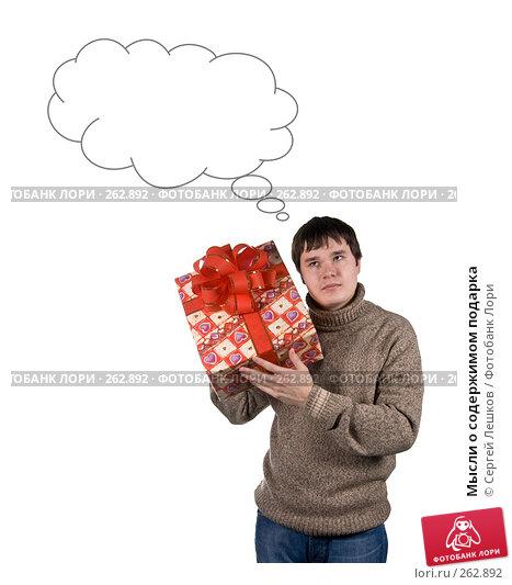 Мысли о содержимом подарка, фото № 262892, снято 25 ноября 2007 г. (c) Сергей Лешков / Фотобанк Лори