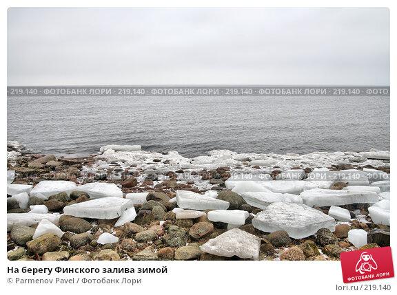 Купить «На берегу Финского залива зимой», фото № 219140, снято 13 февраля 2008 г. (c) Parmenov Pavel / Фотобанк Лори