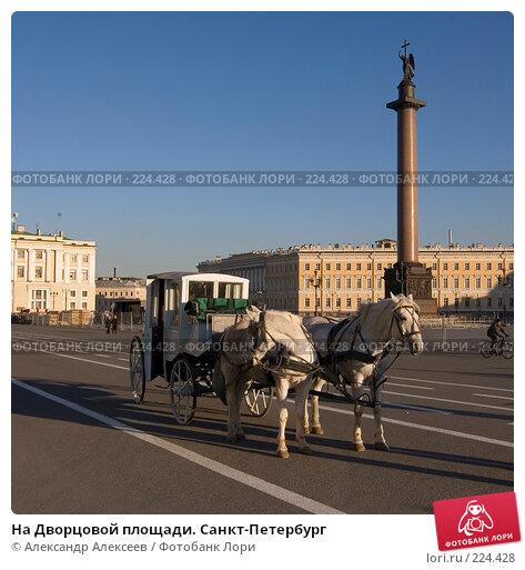 На Дворцовой площади. Санкт-Петербург, эксклюзивное фото № 224428, снято 5 ноября 2007 г. (c) Александр Алексеев / Фотобанк Лори