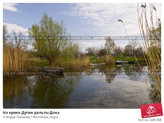 На ерике Дугин дельты Дона, фото № 249368, снято 11 апреля 2008 г. (c) Борис Панасюк / Фотобанк Лори