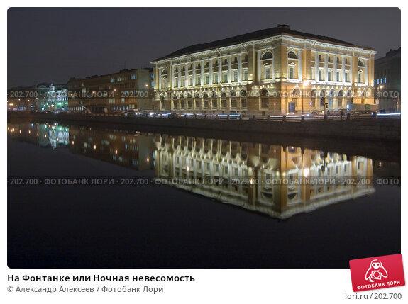 На Фонтанке или Ночная невесомость, эксклюзивное фото № 202700, снято 12 февраля 2008 г. (c) Александр Алексеев / Фотобанк Лори
