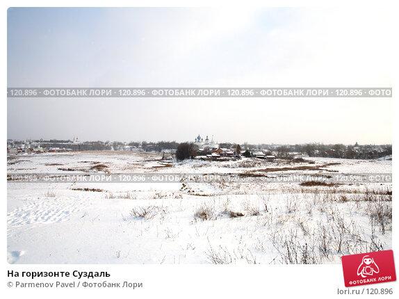 На горизонте Суздаль, фото № 120896, снято 18 ноября 2007 г. (c) Parmenov Pavel / Фотобанк Лори