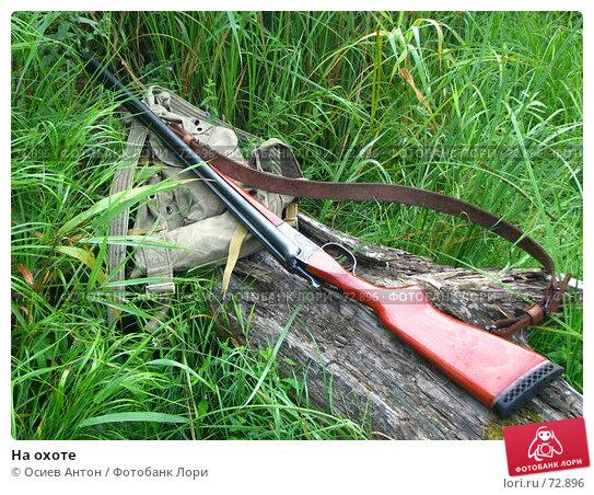 На охоте, фото № 72896, снято 14 августа 2007 г. (c) Осиев Антон / Фотобанк Лори