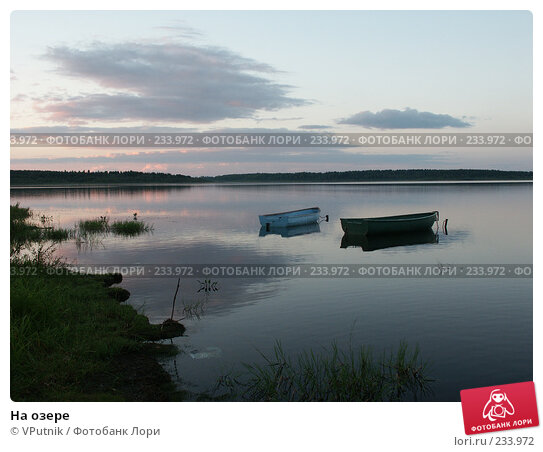 Купить «На озере», фото № 233972, снято 29 августа 2004 г. (c) VPutnik / Фотобанк Лори