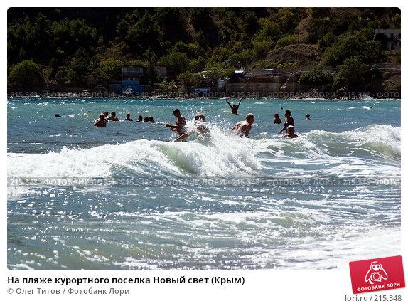 На пляже курортного поселка Новый свет (Крым), фото № 215348, снято 17 сентября 2006 г. (c) Олег Титов / Фотобанк Лори